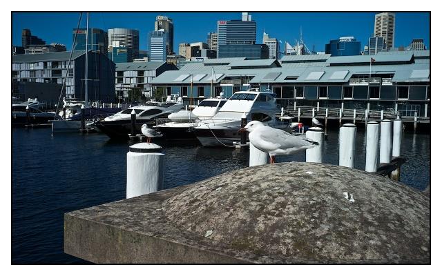 Sydney s1 4