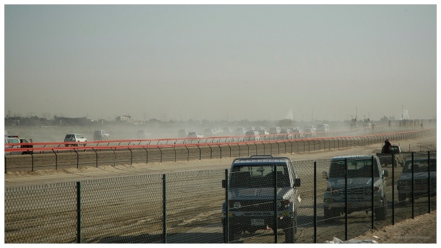 camel race 10