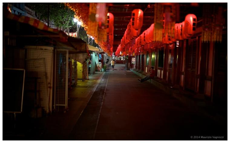 chinatown 05092014 15