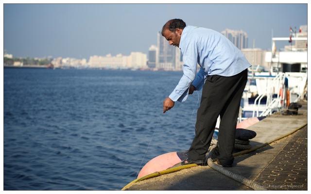 Il Golfo e le Mucche di Mare 79a86750c90e