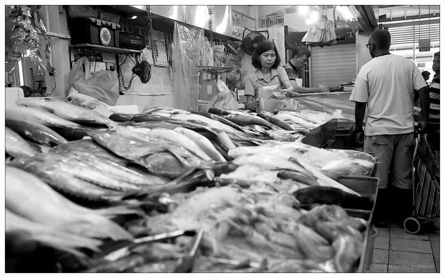 SG Market 5