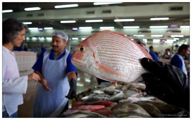 fish-market-24sep2016-1