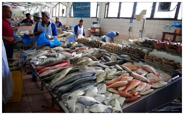 fish-market-24sep2016-11