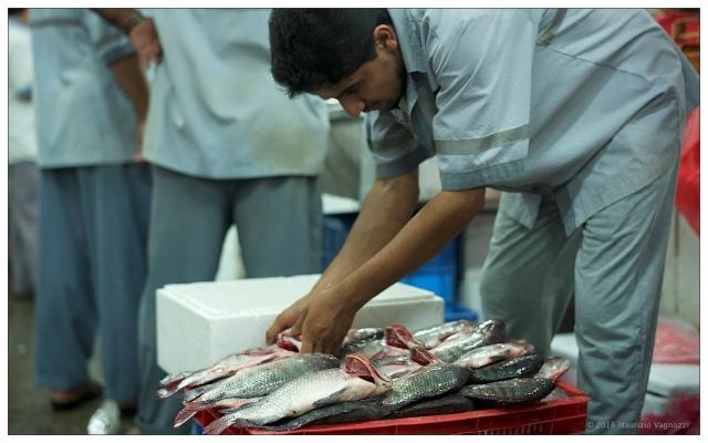 deira-fish-market-5
